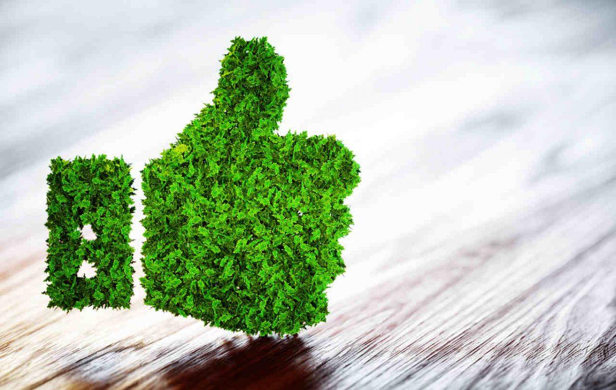 Ekologiczne opakowania dla e-commerce